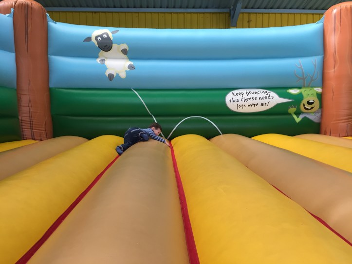 world of country life indoor fun bouncy castle