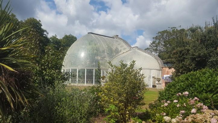 bicton botanical gardens in Devon colour flowers