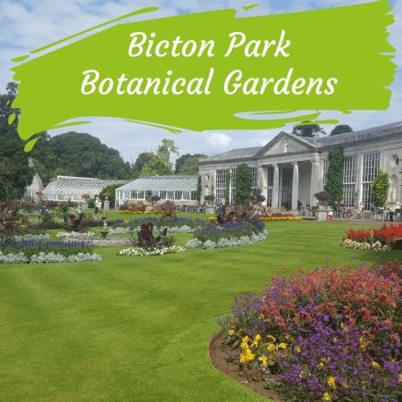 bicton park botanical gardens exmouth devon (1)