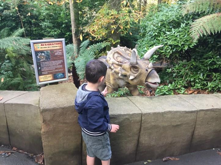 coombe martin wildlife dinosaur park animated dinosaur in forest tricerotops