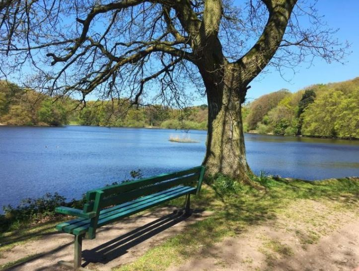 hidden gems in staffordhire and visiting knypersley reservoir