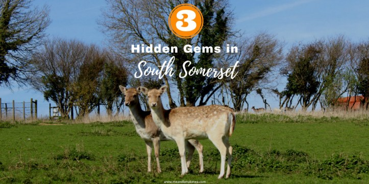 hidden gems and places to visit in South Somerset UK