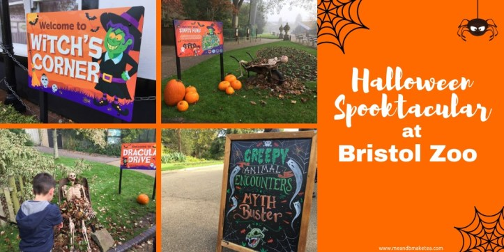 Helf term things to do with kids at Bristol zoo during halloween - events and activities for the family - a review