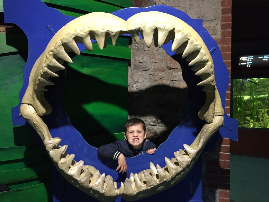 shark jaws Helf term things to do with kids at Bristol zoo