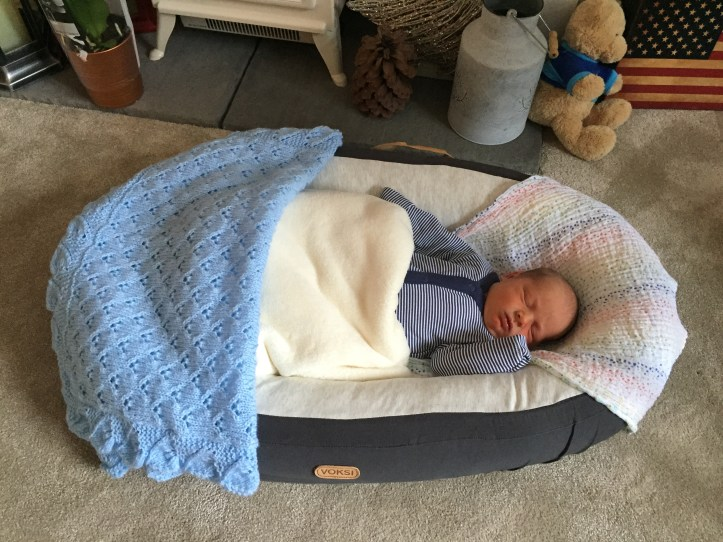 Using the voksi baby nest - review