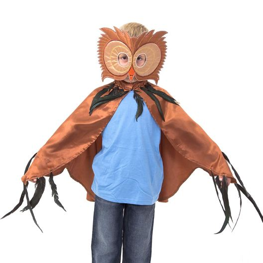 World book day dressing up ideas - brown owl