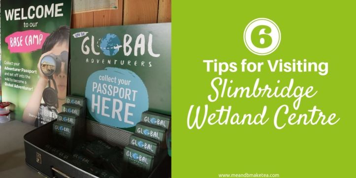 visiting slimbridge - review and tips on what to take