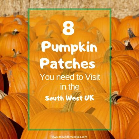 pumpkin-patches-twitter_image