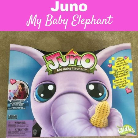 juno my baby elephant main image for review post