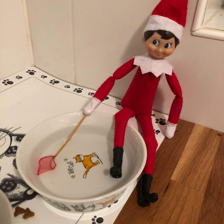 elf on the shelf fishing ideas