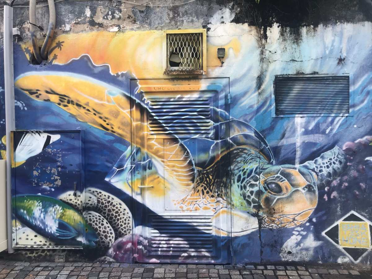 Sea turtle street art in Fort-de-France, Martinique