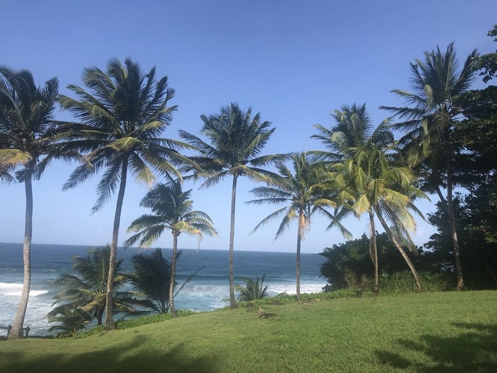 Anse Charpentier, Martinique