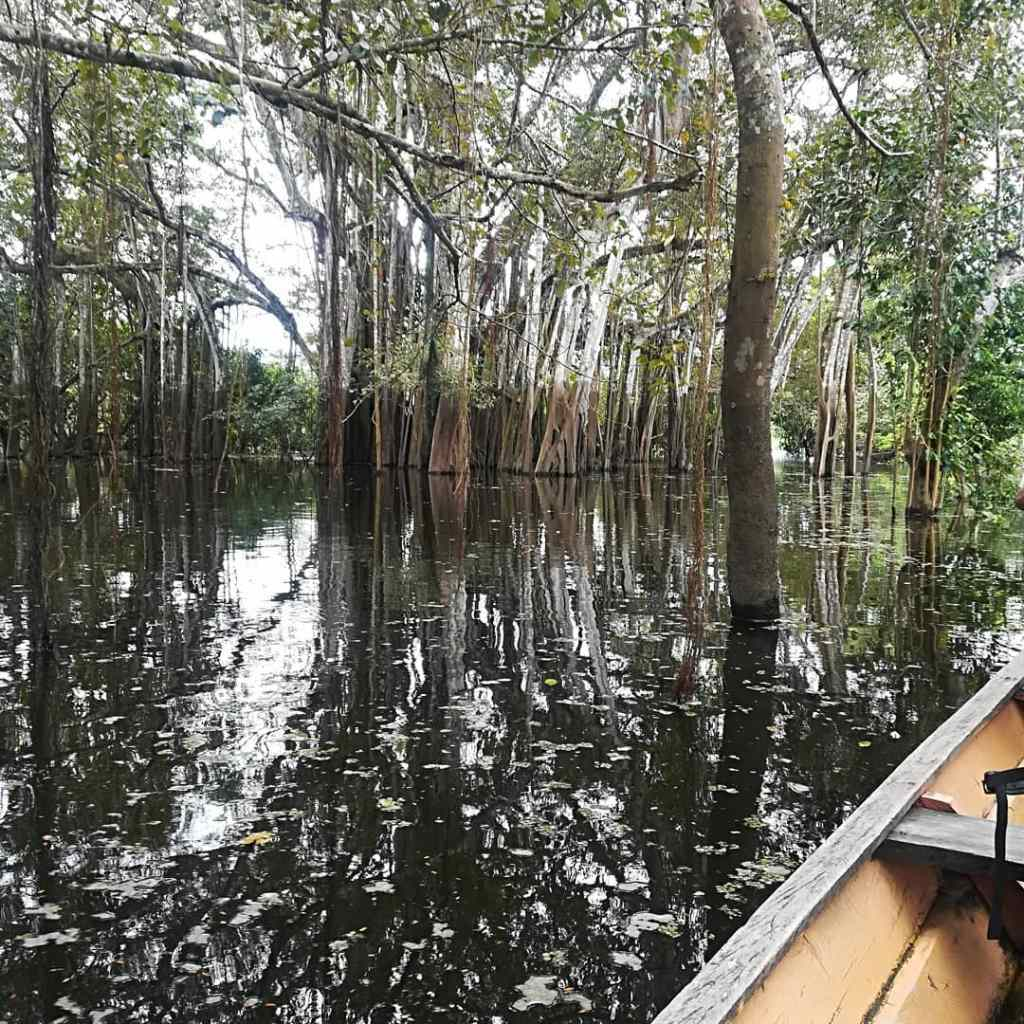 Canoeing on the Colombian Amazon