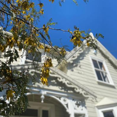 100daysofgratitude-day-16-last-view-from-our-lovely-lyttelton-house