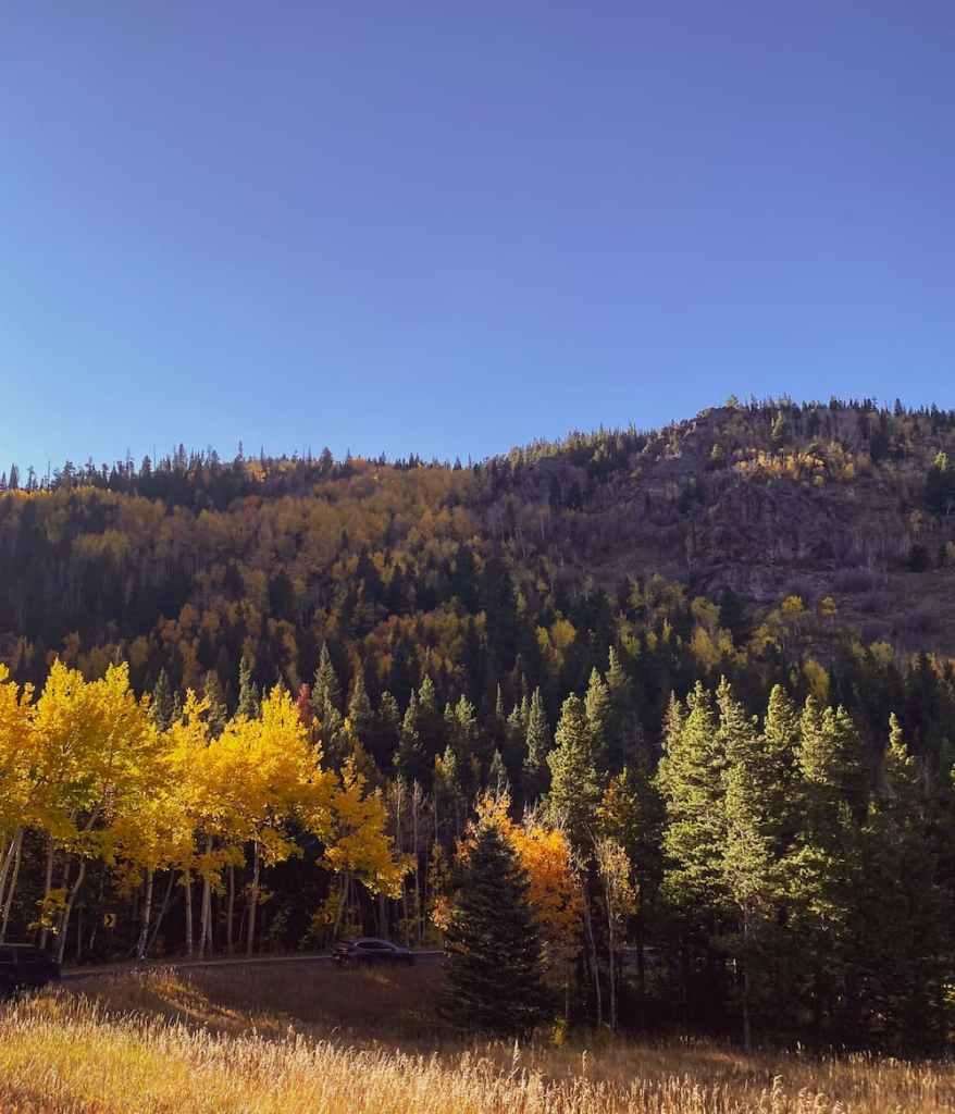 Rocky Mountain National Park 7