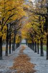 View from Augarten park in Vienna Austria