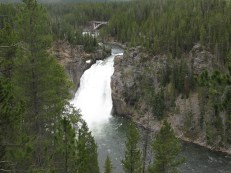 Upper Falls - Grand Canyon of Yellowstone