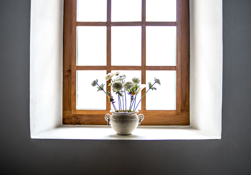 window with flowers, Making faith practical, long distance family, Babs Mullinax, me and grace, me & grace, caring for your family, ideas for family, Bible study, encouragement from the Word, understanding Scripture