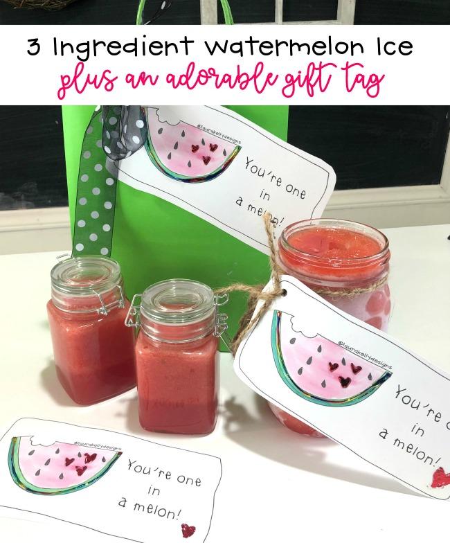 3 Ingredient Watermelon Ice Treat