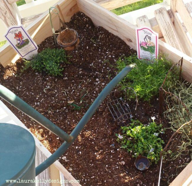 Fairy Garden in a Crate