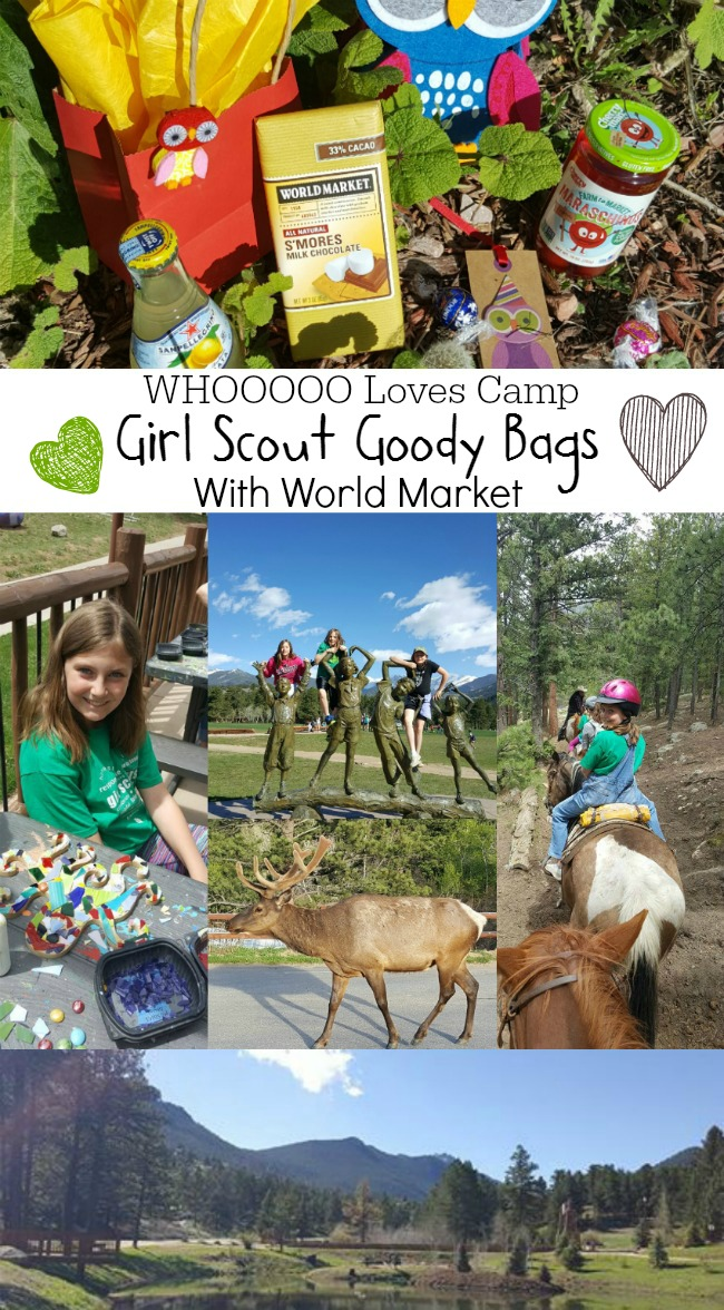 World Market Girl Scout Goody Bags