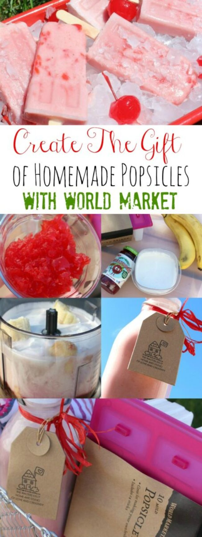 Homemade Popsicle Gift World Market