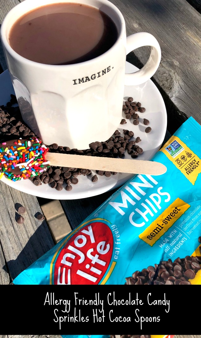 Allergy Friendly Hot Cocoa Candy Spoons Chocolate