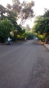 Napier Road, a quiet road with an old world charm