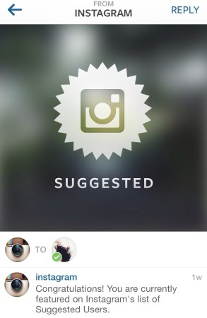 instagram suggested user tips