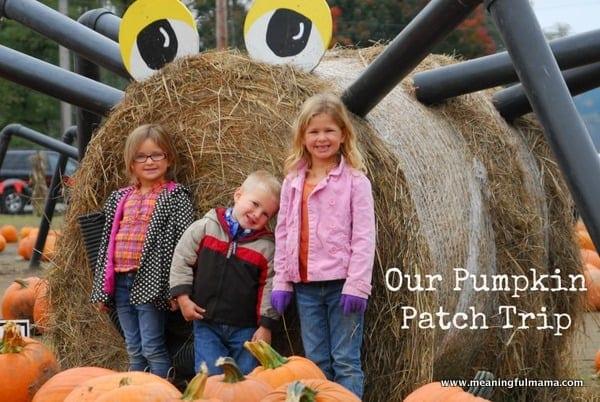 1-#pumpkin patch #corn maze #spooners-039