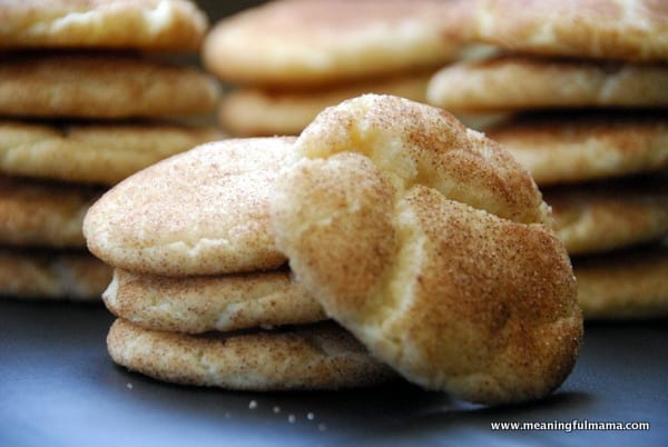 1-snickerdoodle-001 #shop