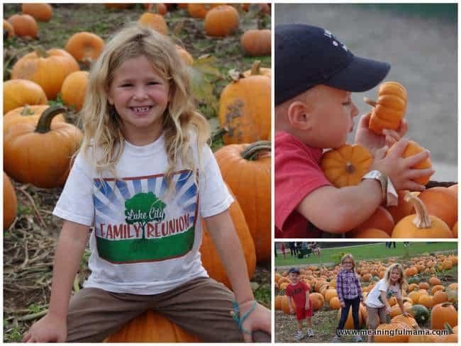 1-Pumpkin Patch Schilter Farms 2014 2 Oct 25, 2014, 8-41 AM