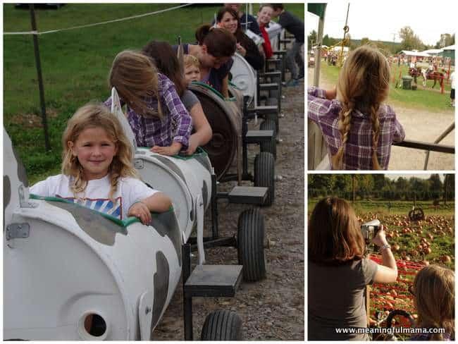 1-schilter farm pumpkin patch corn maze Oct 26, 2014, 9-34 AM