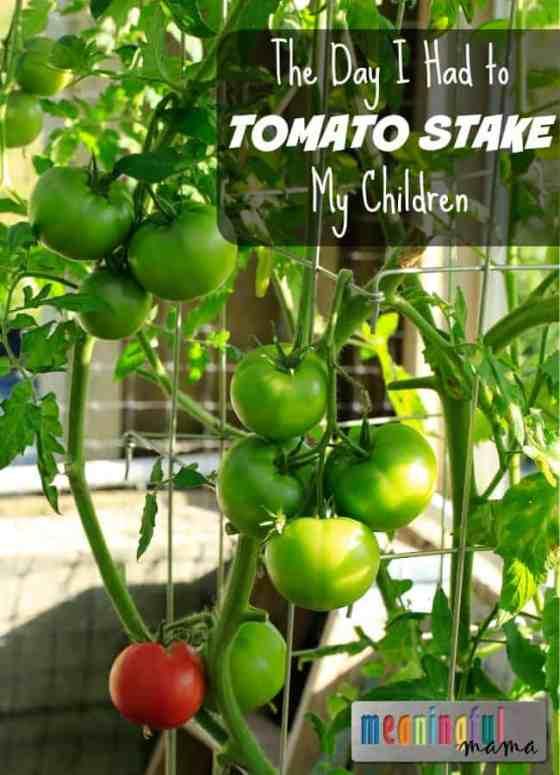 How to Tomato Stake Children - Parenting Strategies for Raising Kids
