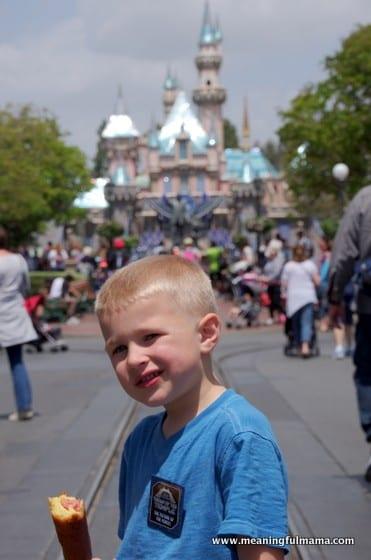 1-Disneyland Trip 2016 Apr 28, 2016, 12-001