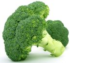 broccoli | vegetable name