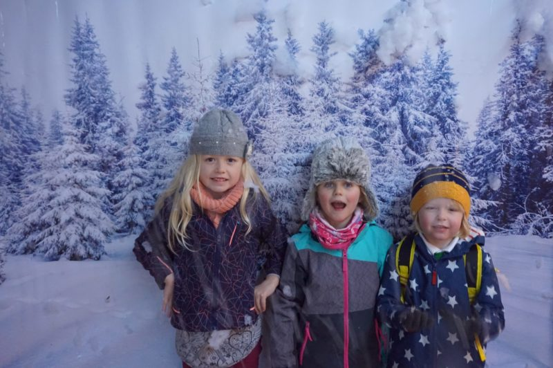 Christmas Experience Lotherton Hall - Let it snow