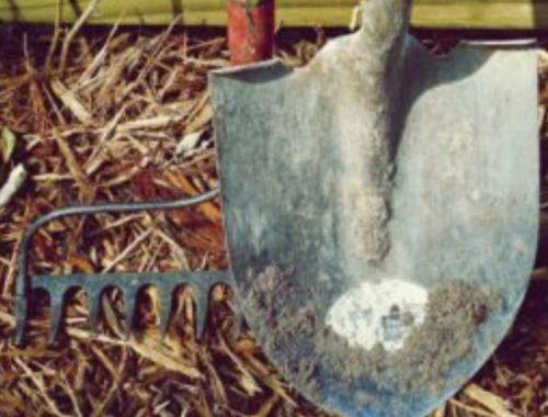 Keeping Garden Spade