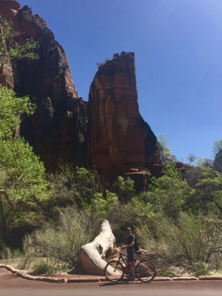 Zion National Park - 3 of 20