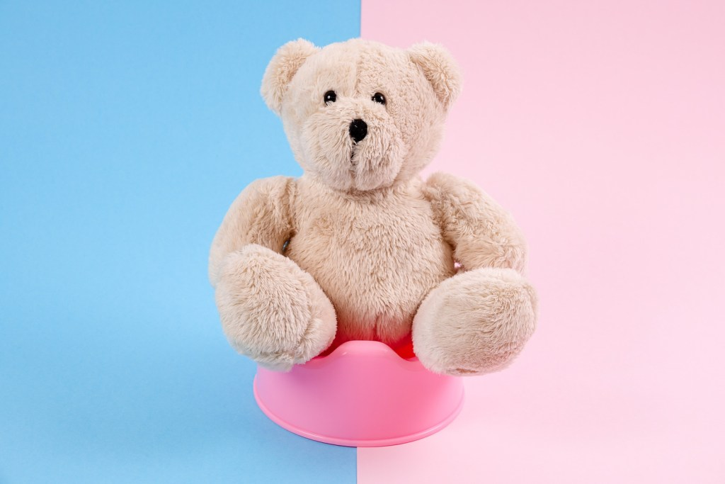 potty-training-tips-concept-teddy-bear-sitting-on-pot-blue-and-pink-background