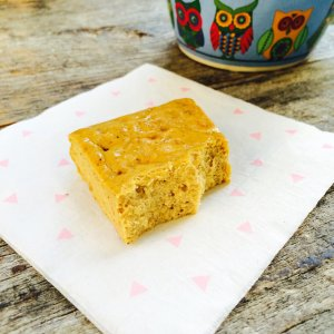 Low Carb Pumpkin Spice Protein Bars | Meat Free Keto - gluten free, grain free, sugar free