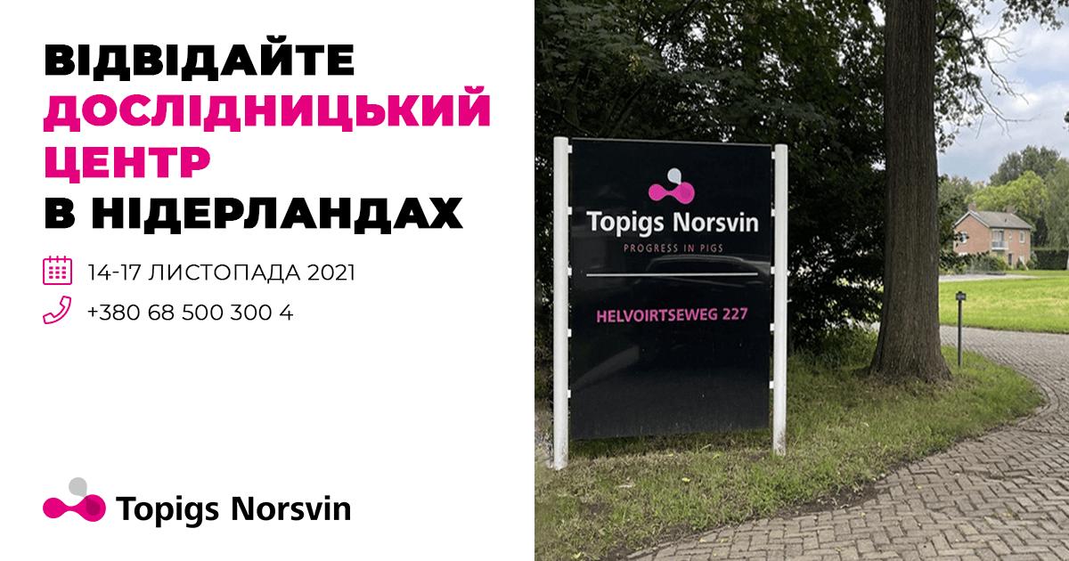 Стало відомо, коли українські свинарі зможуть відвідати дослідницький центр Topigs Norsvin в Нідерландах