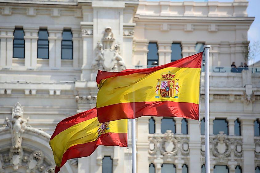 Іспанія стає виробником свинини №1 в ЄС