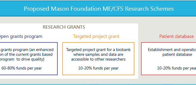 Proposed Mason Foundation research scheme diagram, listing the precentage of where money may go. Details in article.