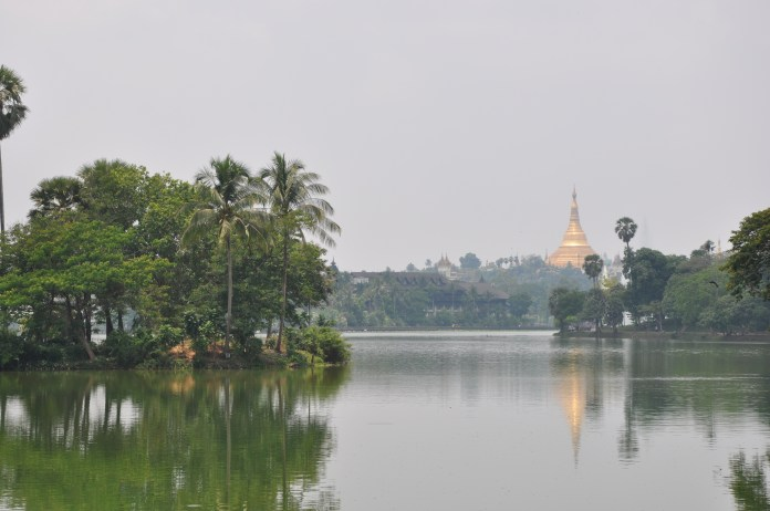 The view of Schwedagon from the lake in Yangon