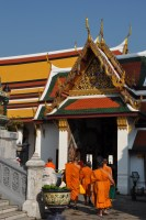 The monks waking around the Palace