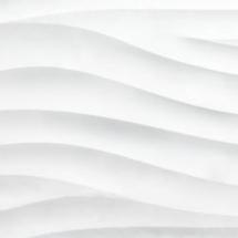fit250x250-image-969-1469043409