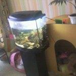 продам тумбочку под аквариум Новомосковск Днепропетровская область Украина фото 14