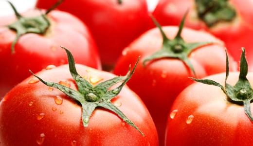 トマトピューレとトマト缶の違いとは?重量や作り方についてもご紹介!