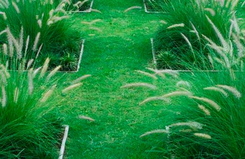 Садовые дорожки из травы или камней. Что выбрать?